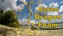 http://www.joyblend.com/images/articles/small/asian-dragon-foam.jpg